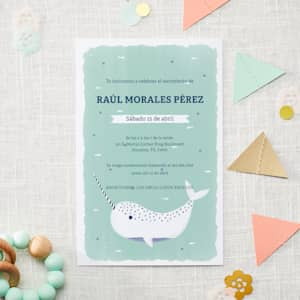 Baby Shower Invitations Birth